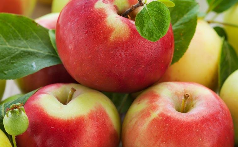 8 redenen om appels te eten