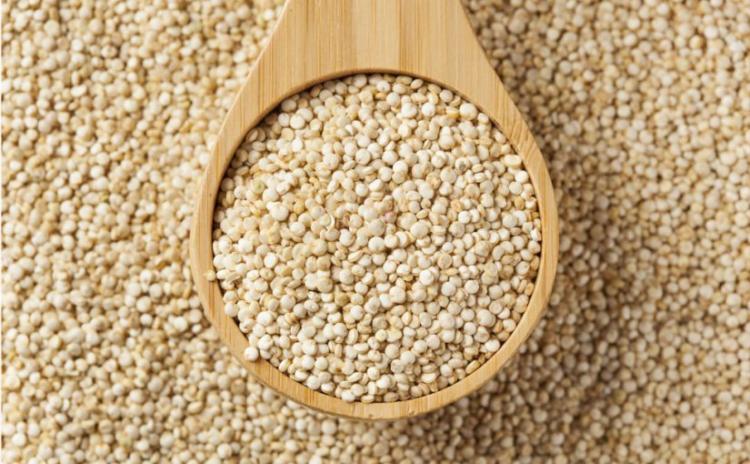 Quinoa korrels